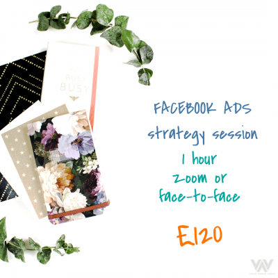 facebook ads strategy session zoom call training